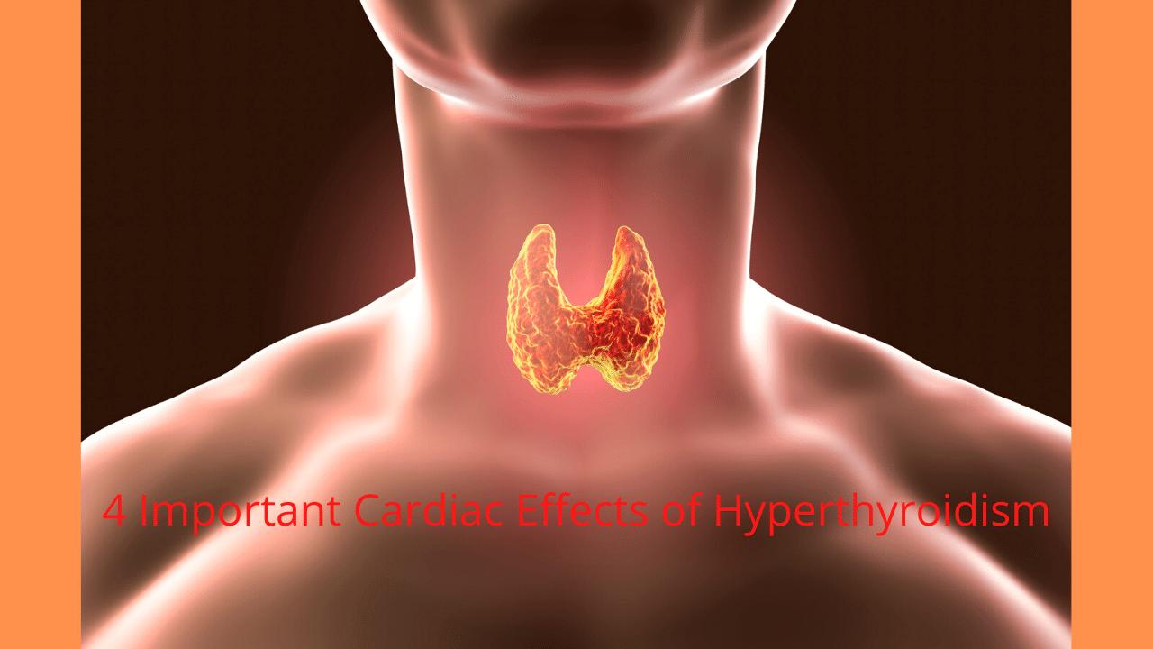 4 Important Cardiac Effects of Hyperthyroidism